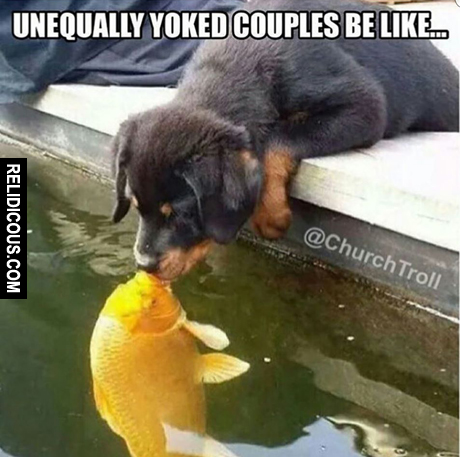 unequally_yoked
