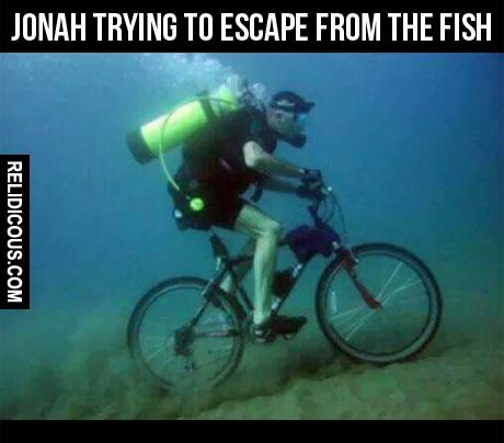 jonah2