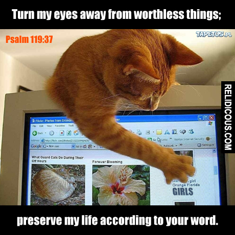 psalm119.37