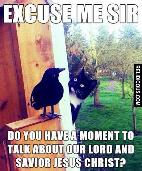 excuse_me_sir_2