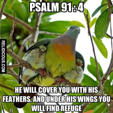 psalm_91.4