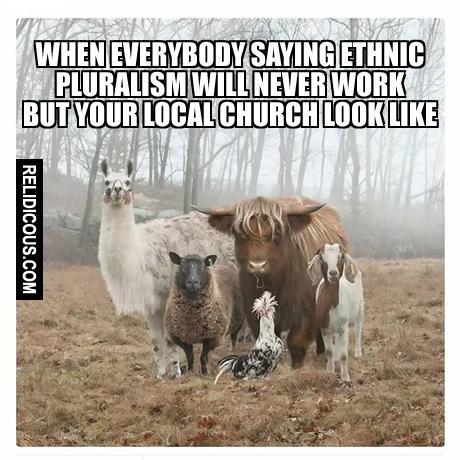 ethnic_pluralism